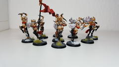 First Squad of Witch Aelves - Overview 1